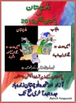 election 2013 urdu 3
