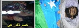 Shaheed Nasir Dagarzahi