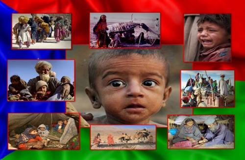 Baloch Refugee