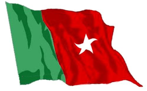 bnm-flag