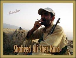 Shaheed Advocate Ali Sher Kurd 3