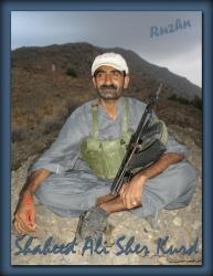 Shaheed Advocate Ali Sher Kurd 4