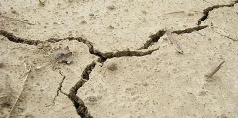 EARTHQUAKE-480x238