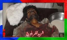 Shaheed Zaffar Jan Baloch