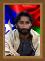 Shaheed Ali Nawaz Gohar Khan 8
