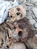 Mass grave Panjgur 5